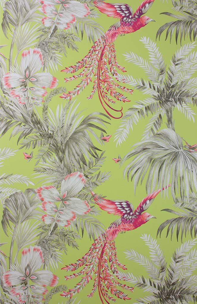 Bird Of Paradise Wallpaper in multi-color from the Samana Collection by Matthew Williamson