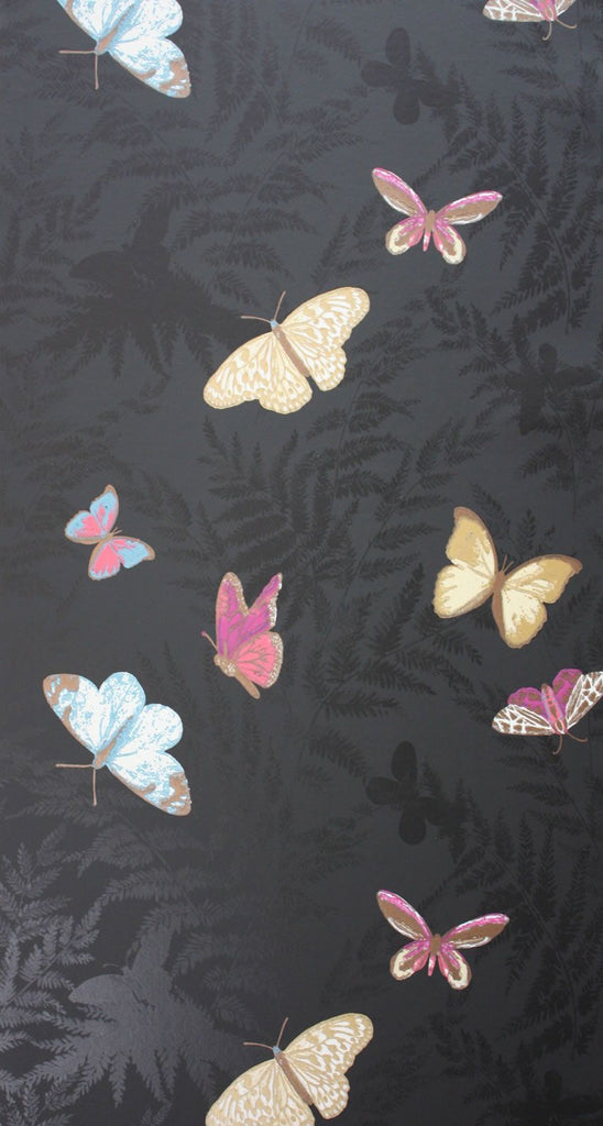 Farfalla Wallpaper in Black background with Brilliantly coloured butterflies from the Lombardia Collection by Nina Campbell