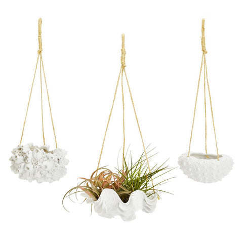 Sealife Hanging Planter, in Assorted Styles