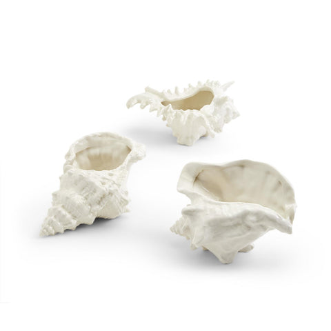 Seashell Decor / Cachepot, Set of 3