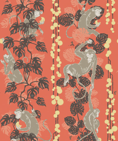 5 Monkeys Wallpaper in Terracotta from the Kingdom Home Collection by Milton & King