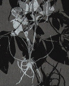 Sample Sleeping Briar Rose Wallpaper in Noir design by Jill Malek