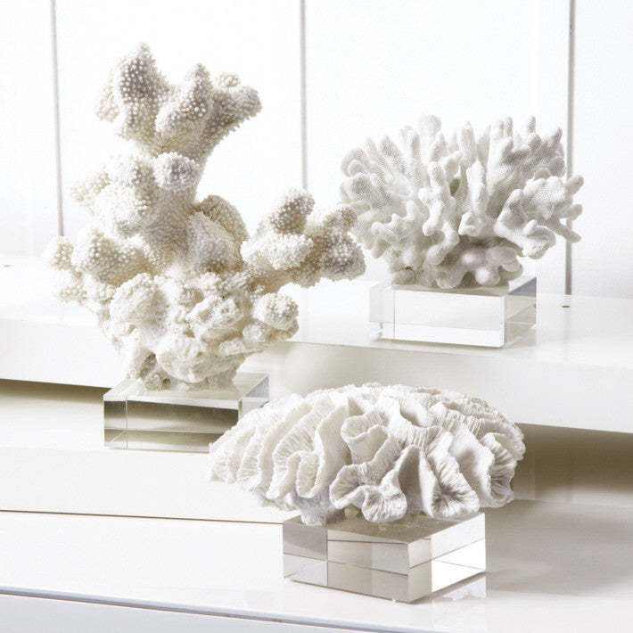 Set of 3 White Coral Sculpture on Glass Stands by Twos Company