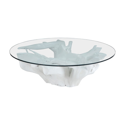 Yava Teak Root Cocktail Table with Glass Top in White by Burke Decor Home
