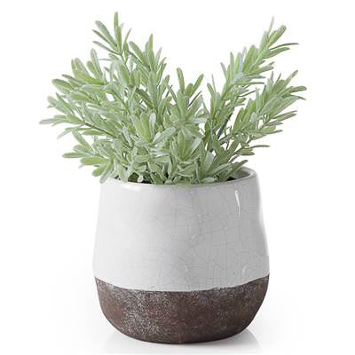 "Corsica Ceramic Crackle 2 Tone 4"" Round Pot in White"