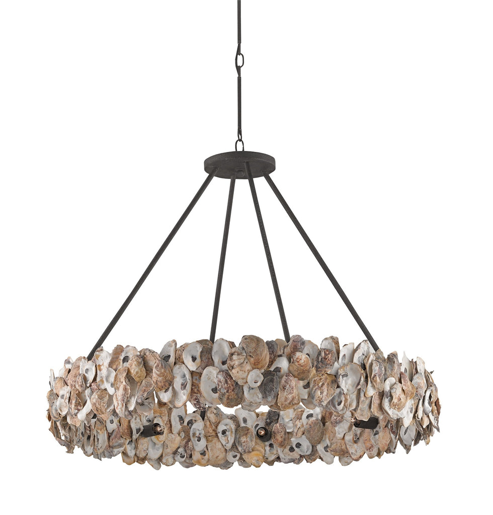 Oyster Circle Chandelier