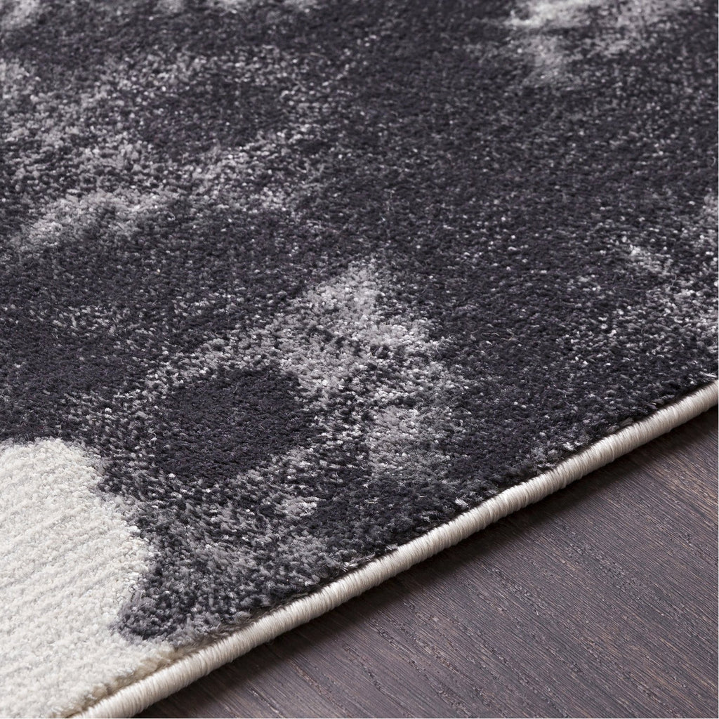 Aberdine ABE-8016 Rug in Gray & Black by Surya
