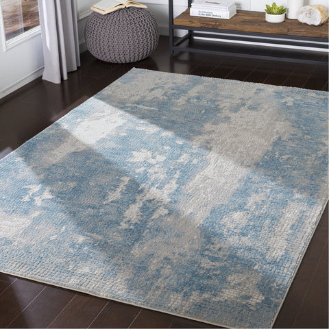 Aisha AIS-2301 Rug in Sky Blue & Gray by Surya