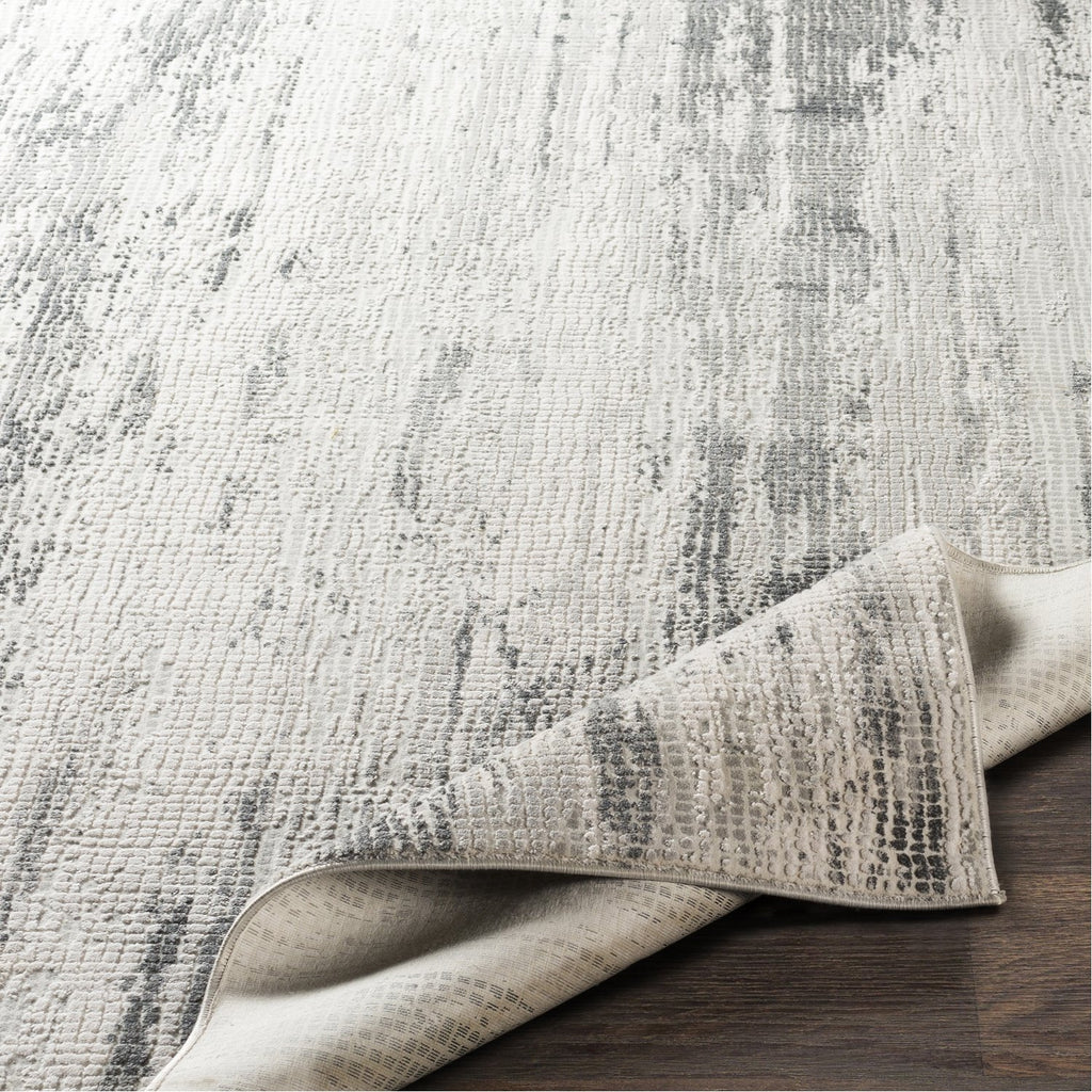 Aisha AIS-2304 Rug in Gray & Charcoal by Surya