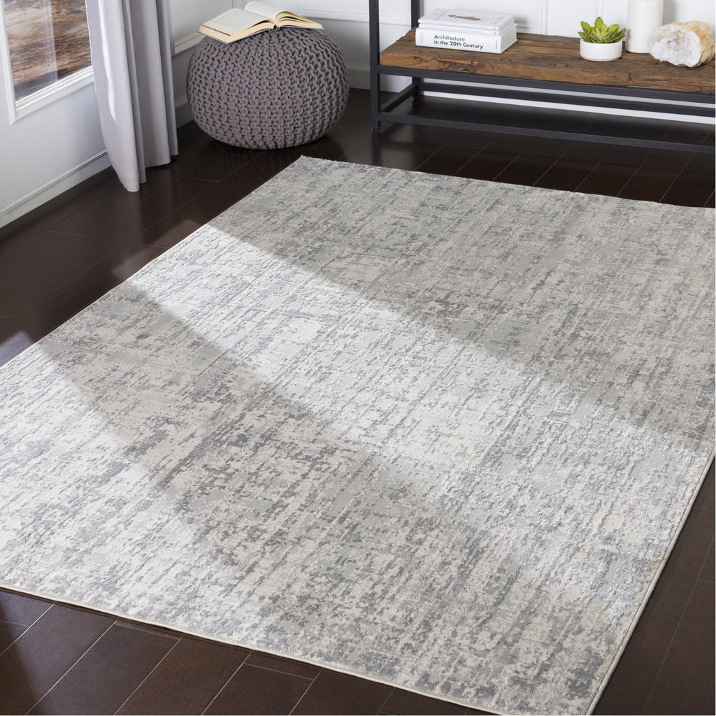 Aisha AIS-2305 Rug in Gray & White by Surya