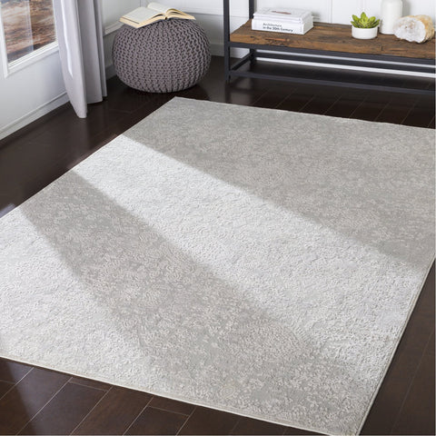 Aisha AIS-2306 Rug in Light Gray & White by Surya