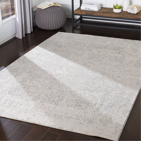 Aisha AIS-2307 Rug in Light Gray & White by Surya