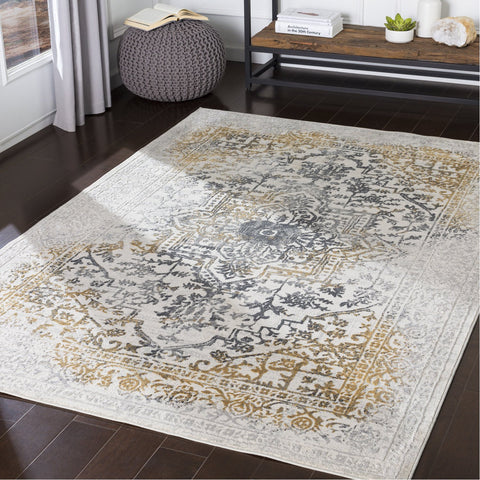 Aisha AIS-2308 Rug in Charcoal & Gray by Surya