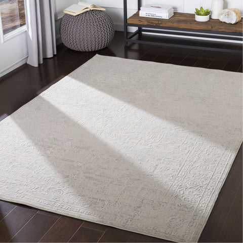 Aisha AIS-2309 Rug in Medium Gray & White by Surya