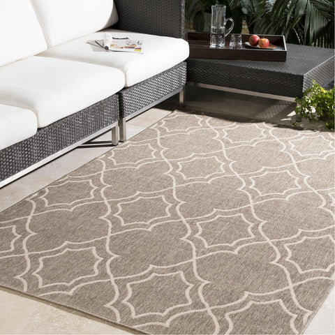 Alfresco ALF-9587 Rug in Camel & Cream by Surya