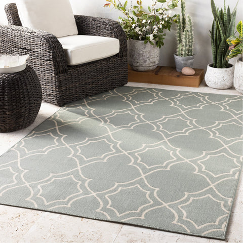 Alfresco ALF-9589 Rug in Sage & Cream by Surya
