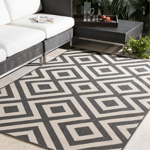 Alfresco ALF-9639 Rug in Black & Cream by Surya