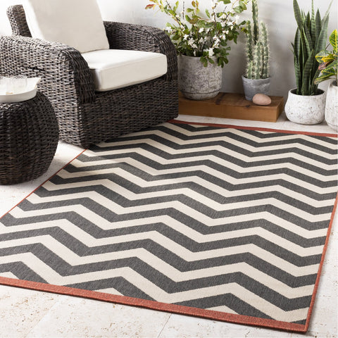 Alfresco ALF-9646 Rug in Black & Cream by Surya