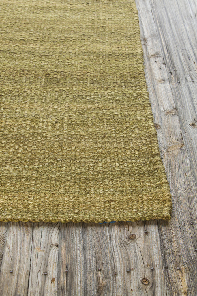 Amela Collection Hand-Woven Area Rug in Green