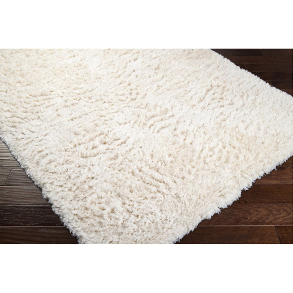 Ashton ASH-1300 Hand Woven Rug in Cream by Surya