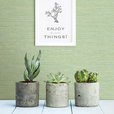 Agave Imitation Grasscloth Wallpaper in Green from the Pacifica Collection by Brewster Home Fashions