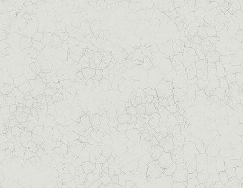 Alchemy Wallpaper in Silver, Grey, and Cream from the Transition Collection by Mayflower Wallpaper