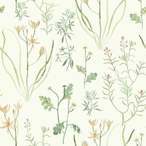 Alpine Botanical Wallpaper in Ivory and Green from the Norlander Collection by York Wallcoverings