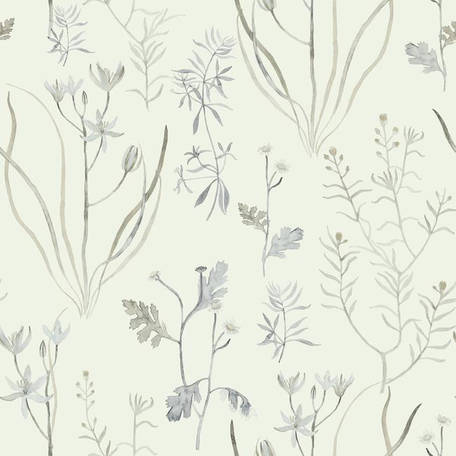 Sample Alpine Botanical Wallpaper in Ivory and Grey from the Norlander Collection by York Wallcoverings