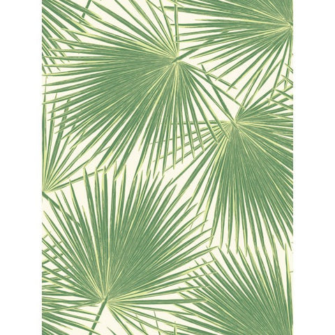 Aruba Wallpaper in Green from the Tortuga Collection by Seabrook Wallcoverings