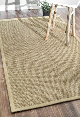 Elijah Seagrass w/ Border Rug in Beige design by NuLoom