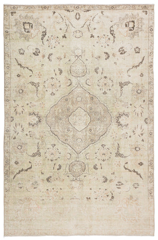 Victoire Medallion Green/ Gray Rug by Jaipur Living