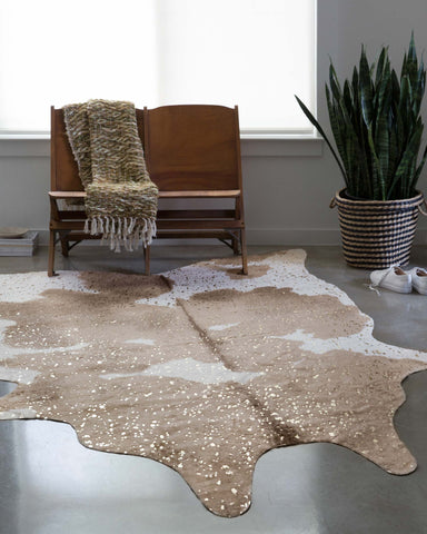 Bryce Rug in Taupe & Champagne design by Loloi