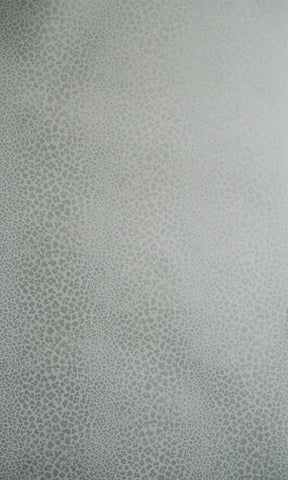 Bagatelle Spot Wallpaper 04 by Nina Campbell for Osborne & Little