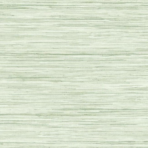 Sample Bahiagrass Wallpaper in Fern from the Water's Edge Collection by York Wallcoverings