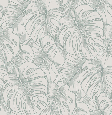 Balboa Botanical Wallpaper in Olive from the Scott Living Collection by Brewster Home Fashions
