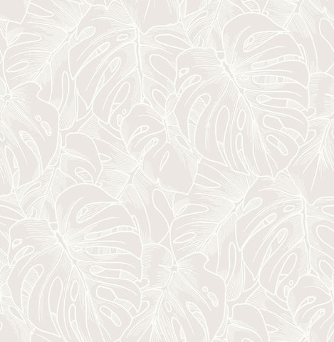 Balboa Botanical Wallpaper in White from the Scott Living Collection by Brewster Home Fashions