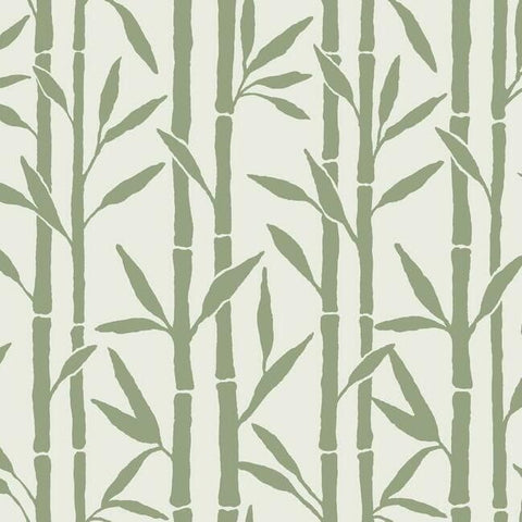 Bamboo Grove Wallpaper in Green and White by Antonina Vella for York Wallcoverings