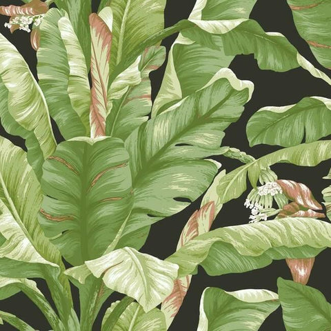 Sample Banana Leaf Peel & Stick Wallpaper in Green and Black by York Wallcoverings