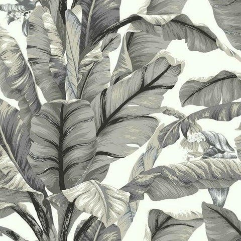 Sample Banana Leaf Peel & Stick Wallpaper in White and Black by York Wallcoverings