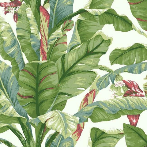 Sample Banana Leaf Peel & Stick Wallpaper in White and Green by York Wallcoverings