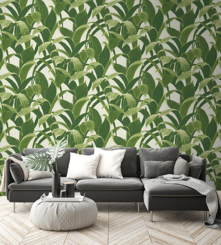 Banana Groves Peel-and-Stick Wallpaper in Green by NextWall