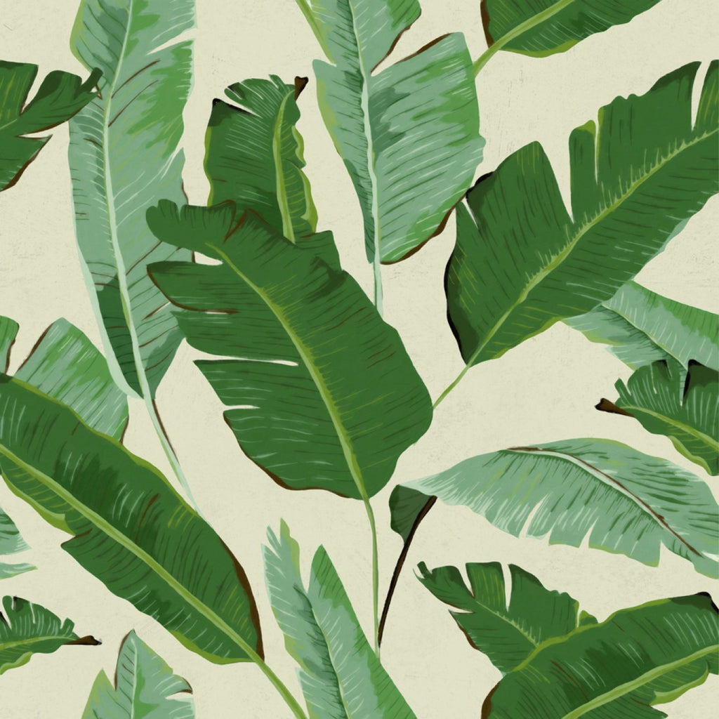 Sample Banana Leaves Wallpaper in Beige and Green from the Tropical Vibes Collection by Mind the Gap