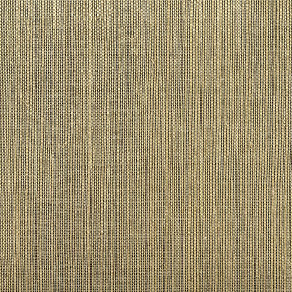 Sample Barbora Chocolate Grasscloth Wallpaper from the Jade Collection by Brewster Home Fashions