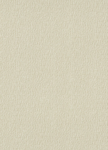 Bark Wallpaper in Beige design by BD Wall