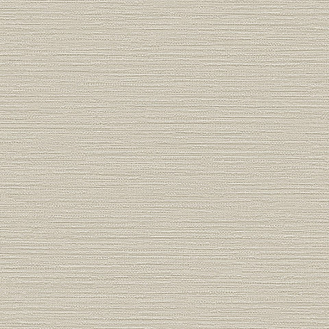 Belle Textured Plain Wallpaper in Grey Pearl by BD Wall