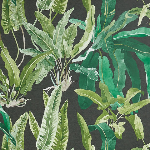 Benmore Wallpaper in Emerald and Ebony from the Ashdown Collection by Nina Campbell for Osborne & Little