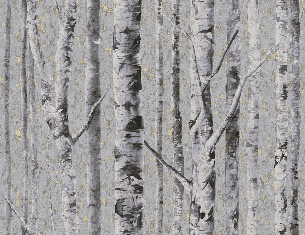 Sample Birch Wallpaper in Moonlight from the Sanctuary Collection by Mayflower Wallpaper