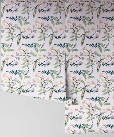 Birds Of Paradise Wallpaper in Pink Lady from the Wallpaper Republic Collection by Milton & King