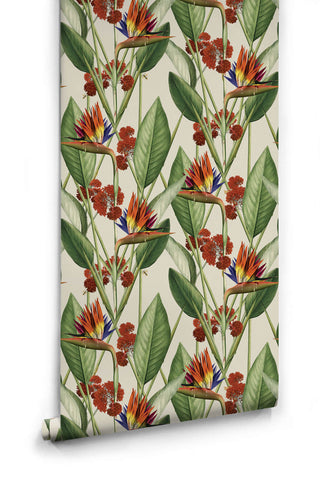 Birds of Paradise Wallpaper in Canvas from the Kingdom Home Collection by Milton & King