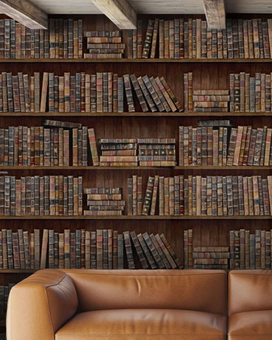 Book Shelves Wallpaper in Brown and Multi from the Eclectic Collection by Mind the Gap